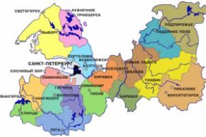 Округи Санкт Петербурга