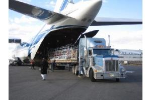Международные перевозки сборных грузов